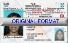 fake id canada drivers license novelty id cards canada alberta