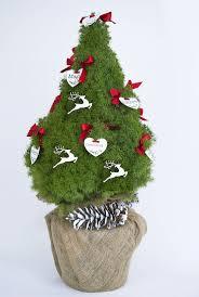 34 best christmas plant decorations christmas trees christmas