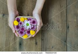 how to send flowers to someone send flowers to someone stock images royalty free images
