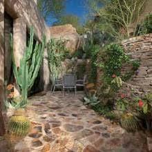 Desert Landscape Ideas by 43 Best Desert Landscape Images On Pinterest Desert Landscape