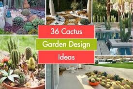 Cactus Garden Ideas 36 Cactus Garden Design Ideas Landscaping With Cactus And Rocks