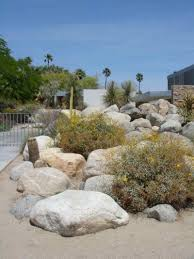 desert landscape ideas for backyards 66 fire pit and outdoor