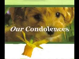 pet condolences pet lose sympathy tribute
