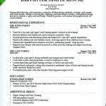 resume babysitter resume references download example of summary
