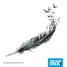 feather ornamental feathers mirror feathers realistic peacock