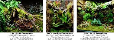 neherp do it yourself terrarium supplies all