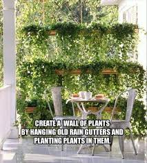 9 best outdoor screening ideas images on pinterest privacy