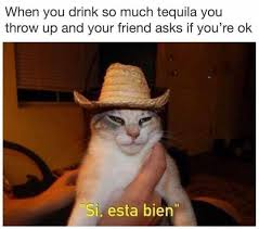 dopl3r com memes when you drink so much tequila you throw up