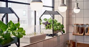 home interior garden ikea indoor gardens produce food year for homes