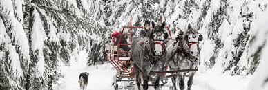sleigh rides western pleasure guest ranch