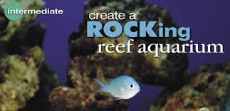 Aquascape Construction Epoxy Aquascaping With Live Rock In The Reef Marine Or Fowlr Aquarium