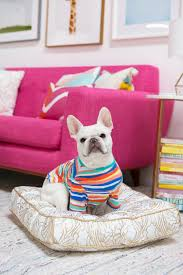 oh joy oh joy for dog bowls beds toys and apparel from oh joy for target dog milk