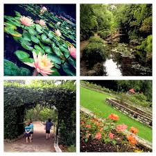 Zilker Botanical Garden Zilker Botanical Garden Budget Friendly Outing For Families