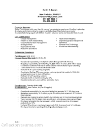 Civil Engineering Sample Resume 100 Resume Profile Sample Engineer Good Resume Objectives