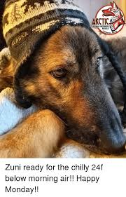 what do they call pastorsin germany german shepherds repost from