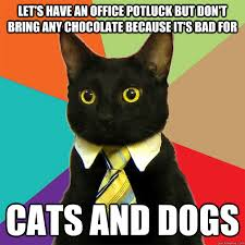 Potluck Meme - let s have an office potluck cat meme cat planet cat planet