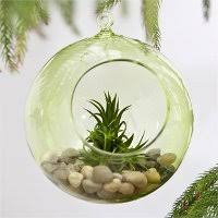 how to decorate with hanging glass terrariums hooks u0026 lattice blog