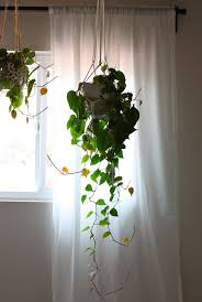 well suited ideas indoor hanging planter creative hanging planters