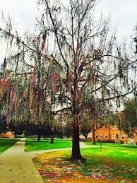 mardi gras trees bead tree cus