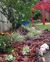 Landscape Ideas For Backyard On A Budget Ideas For A Budget Friendly Nostalgic Backyard Wedding