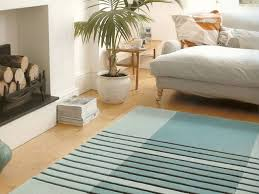 Professional Area Rug Cleaning 55 Best Beautiful Carpets And Area Rugs Images On Pinterest Area