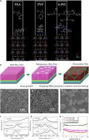 polymer modified halide perovskite films for efficient and stable