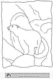 polar bear coloring pages horace u0027s fave polar bear printable