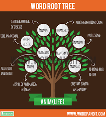 list of root words for get a list of words related to anim root word