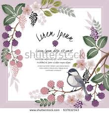 floral border stock images royalty free images u0026 vectors
