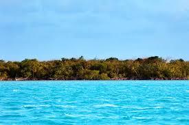 private islands for sale deer caye belize central america