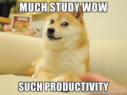 Studying Memes - the best study memes to get you through your studies ivy college