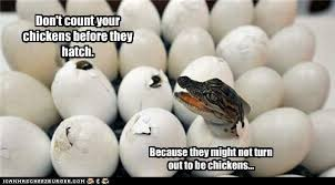 Don Count The Chicken Before They Hatch As A Minister S
