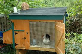 Backyard Chicken Coop Ideas with Backyard Chicken Coop Plans Small Outdoor Furniture Design And Ideas