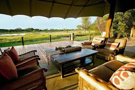 where to find the best safari deals in africa wsj