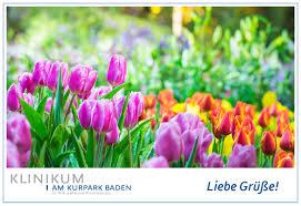 Rheumatologe Baden Baden Online Gästegrüße Klinikum Am Kurpark Baden