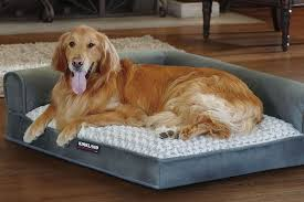 Dog Sofas For Large Dogs by Top Five Dog Beds For Large Dogs Restyourdog Com