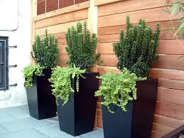 Restaurant Patio Planters by Trends U2013 Pots Planters U0026 More