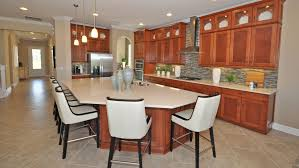 Dining Room Attendant Cordoba Estates Premier Series New Homes In Lutz Fl 33559