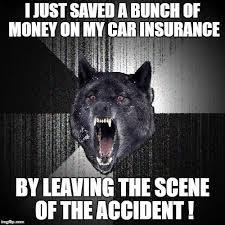 Scene Wolf Meme - insanity wolf meme imgflip