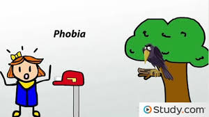physiological psychology definition u0026 principles video u0026 lesson