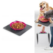 cuisine table int r yummynator food bowl with placemat pink