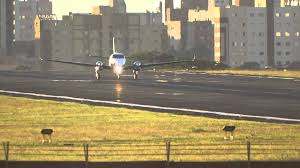 pouso frontal pr gmu king air no aeroporto de londrina youtube