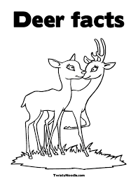 baby deer coloring pages getcoloringpages