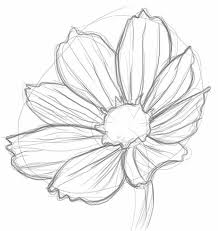 Flower Drawings Black And White - the 25 best daisy drawing ideas on pinterest daisy art pen