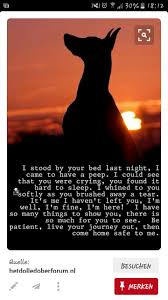 personalized grave marker solar light for pet or loved one http