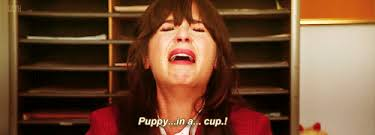New Girl Memes - new girl jess period quote quote number 605311 picture quotes