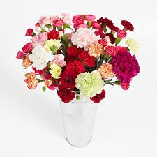 farm fresh flowers farm fresh flowers bouquets delivery mini carnations