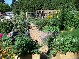 169 best french potager garden images on pinterest gardening