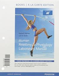 Human Anatomy And Physiology Lab Manual Marieb Isbn 9780134193205 Human Anatomy And Physiology Human Anatomy