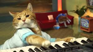 Cat Playing Piano Meme - r i p bento the keyboard cat consequence of sound
